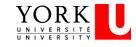York University Logo
